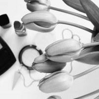 Santé, beauté et biotechs