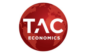 tac_eco_blanc