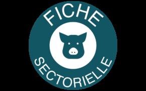 Fiche sectorielle porc