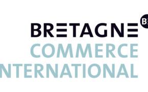 Logo-BCI-glaz-CONTOUR-web