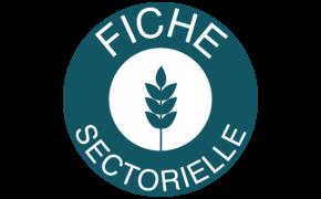 Fiche sectorielle blé